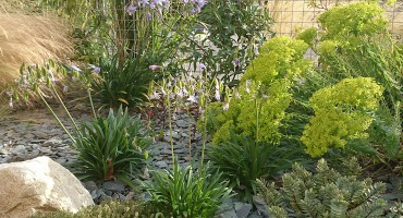 Paysagiste à Médréac en Ille et Vilaine, Les Jardins d\'Hortense
